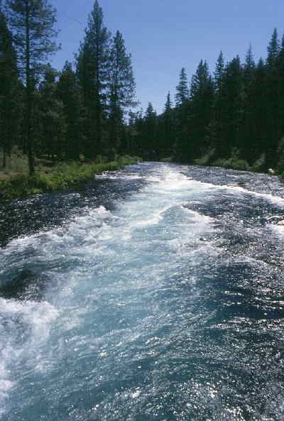 by: SCOTT STAATS/CENTRAL OREGONIAN - Above, the Metolius River near the Wizard Falls Fish Hatchery.