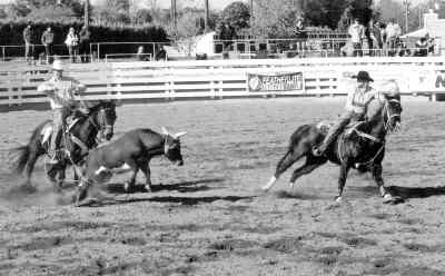 by: contributed photo - Trevor Alves (left) and Ty Johnson (right) showing their team roping form earlier this year at the Hermiston High School Rodeo. The team took first place in the event.