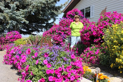 by: Photo by Susan Matheny - Miller stands among her favorite Purple Wave petunias in her side flower garden.