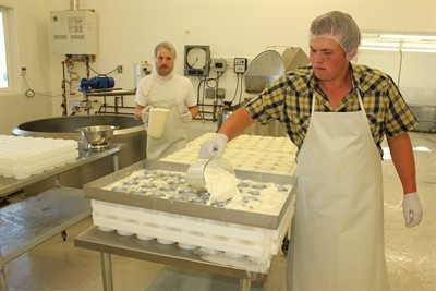 by: Photo by Susan Matheny - Hank, right, and Neil Obringer ladle cheese curds into molds for the Adelle soft cheese.