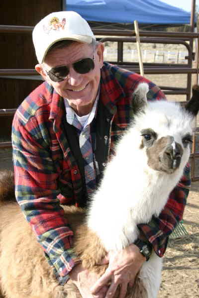 by: Photo By Holly M. Gill - Gene Moe holds Marvel, at three months, the youngest of the Moes' 16 llamas.