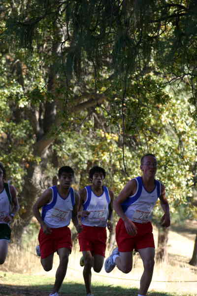 by: Photo By Gary Lindberg - A trio of Madras runners race to the two-mile mark at the Intermountain Conference district meet. The trio of Lex Anguiano (261), Andrew Flu (264 and Brandon Thompson (269) finished just seven seconds apart.