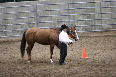 by: Submitted photo - Kayla Vincent of Madras leads her horse around the Deschute County Expo Center during the showmanship event of the Central District competition of the Oregon High School Equestrian team competition.