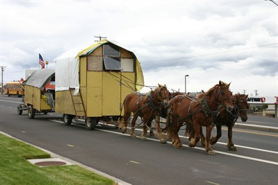 by: Photo by Holly Gill - Wagons and horses roll into Madras on Thursday.