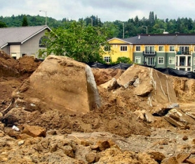 "by: Eileen G. Fitzsimons, The mysterious ""pyramids"" uncovered in Sellwood."
