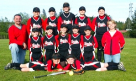 by: , The 10U Sandy Thunder capped a successful season by placing fifth at the state tournament.