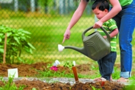 by: David Plechl, Toby Heym, 1, gets help from his mother, Mayland, as he waters their plot at a New Columbia community garden, largely made possible by a grant from the USDA.