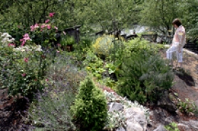 by: Jonathan House, The Peck family garden in Murrayhill will be featured in Sunday's Gardens of Natural Delights tour.