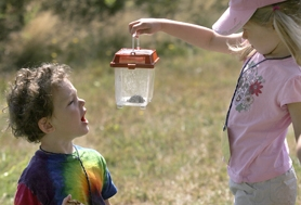 by: Jaime Valdez, Four-year-old Devin Miller, left, reacts to a slug held by Abbey Kirsky, also 4. The pair found the creature at Tualatin Hills Park and Recreation Nature Park. On Saturday, the park will host its annual Bug Fest.