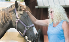 by: John Klicker, Sherri Hart, who works at Celebrate Me Home in Troutdale, rubs the head of her horse Montana at a Sandy farm on Monday, Aug. 21.