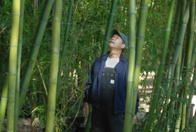 by: VERN UYETAKE, Paul Lee, owner of Bamboo Home and Garden in West Linn, stands on his proptery off Borland Road.