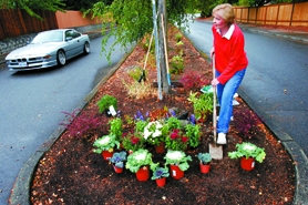 by: Jonathan House, Barbara Hiatt has spent two years keeping the Burnsridge subdivision entrance a colorful place.