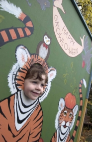 by: COURTESY OF OREGON ZOO, Kylee, 4, who didn't give her last name, tries on a tiger guise at the zoo's Howloween.