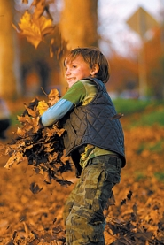 by: DAVID PLECHL, While Zion Fadel has fun with leaves, many people are putting fallen foliage to work as an ingredient in compost and mulch.