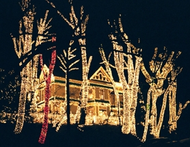 by: WEB SUBMITTED PHOTO, This house used lights to outline trees, the roof and windows. How did you decorate your house? Share it with the Lake Oswego Review and West Linn Tidings.