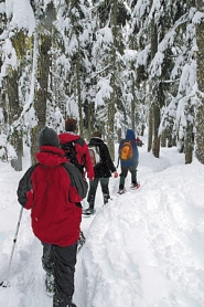 by: ©2006 ERIK FERNANDEZ, Oregon Wild encourages winter adventurers to strap on the snowshoes for a hike in Mount Hood National Forest next month.