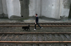 by: JIM CLARK, Filmmaker Matt McCormick takes his dog Tess for a walk in the North Portland industrial area where he lives. Tess accompanies him on his film shoots; the jingle of her tags can sometimes be heard on the soundtracks.