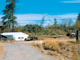 by: Anthony Roberts, The Moser property on Murdock Road shortly after it was clear cut in August 2006.