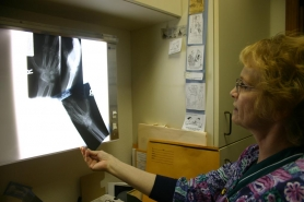 by: Marcus Hathcock, Jan Funk, a medical technician at Firwood Medical Center in Sandy, examines some X-rays taken of a fractured wrist. If the clinc expands its hours and days and becomes an urgent care facility, locals could have X-rays taken after business hours.
