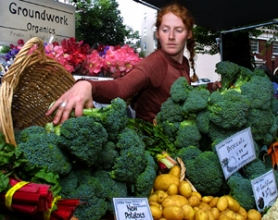 by: STEVEN McALPIN, In one of the city's rites of spring, 250-some vendors, such as Alyssa Rubenstein of Groundwork Organics, get set to pick and promote their produce at the Portland Farmers Market, which opens this week.