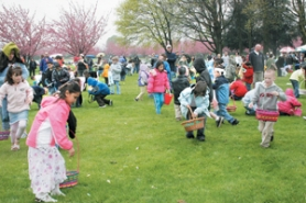 by: Shanda Tice, Children, ages 5-10, aren't fazed by the rain as they collect sweet treats and toys that cover the ground at Blue Lake Park during one of the egg hunts Saturday, April 7.