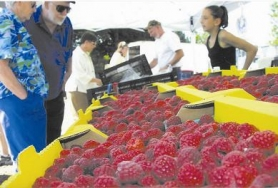 by: file photo, Raspberries and rock 'n' roll abound at the Boring Farmer's Market.