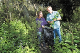 by: Carole Archer, Julie DiLeone, left, and Lynn Gibbons pull and bag garlic mustard near the Columbia Scenic Highway on Monday, April 23. The invasive weed grows throughout the gorge, destroying native flowers such as purple Delphinium, trillium and snowberry.