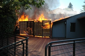 by: , SUBMITTED PHOTO / GERT ZOUTENDIJK