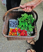 by: SARAH TOOR, A recent story surveying prices of produce at farmers markets versus grocery stores received much response from readers, many of whom — for many reasons — choose to purchase directly from the farmers.