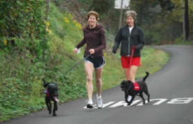 by: Vern Uyetake, Jenny Pyle of West Linn, left, and Sherry Sullivan of Portland head down Old River Road with their canine running partners for the day.