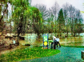 by: Rita A. Leonard, Neighbors marveled at the height of floodwaters at Sellwood's Johnson Creek Park on the extremely rainy Monday, December 3rd. The heavy rain still falling when this photo was taken imparts a surreal, speckled quality.