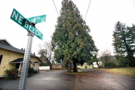 "by: Carole Archer, The Gresham City Council has ambitious plans for the Beech Street area, located across the street from the future Center for the Arts site. But some property owners say that what the city calls an ""incentive"" to build is really a penalty."