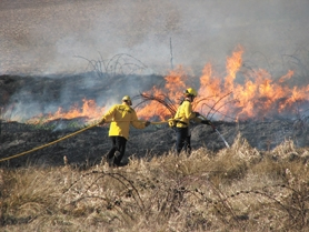 by: Courtesy Photo, A brush fire in February is pretty unusual, but last Thursday, Feb. 28, firefighters from four cities were called out to a fire near the Wilson River that started from a backyard burn pile.