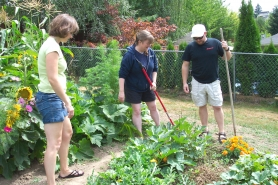 by: Kelly Moyer, HOW DOES YOUR GARDEN GROW — From left to right, Christine Brandt, Dana Anderson and Ryan Zettlemoyer inspect Anderson's garden plot at the community garden behind the Sherwood Community Friends Church. The three gardeners were the original members of the Sherwood community garden, which has nearly tripled its number of members and still has room for more gardeners. For more information, visit www.sherwoodfriends.com.