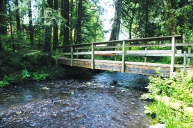by: marcus hathcock, The city's Tickle Creek Trail provides a serene jaunt out of the suburbs and into the forest.