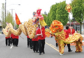 by: David F. Ashton, The Dragon and Lion dancers, pictured from last year, will add color to the 82nd Avenue of Roses.