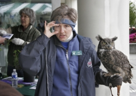 by: File photo, Diane Adkin, a volunteer with the Audubon Society, holds Julio, a great horned owl and answers visitors' questions at last year's Earth Day celebration at Gresham City Hall.