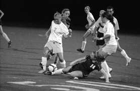by: MATTHEW SHERMAN, 