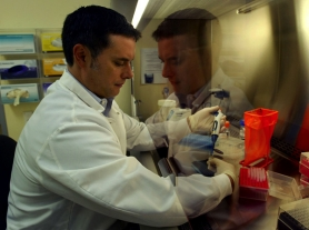 by: L.E. BASKOW, Forensic scientist Michael Koch processes a DNA identification at the Portland Forensic Laboratory. Letter writers weigh in about the growing acceptance of taking DNA samples from people convicted of crimes, and the ethical issues surrounding that practice.