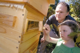 "by: CHRISTOPHER ONSTOTT, Since filming ""Queen of the Sun,"" director Taggart Siegel has become a backyard beekeeper himself – with a little help from his daughter, Olive, 5."