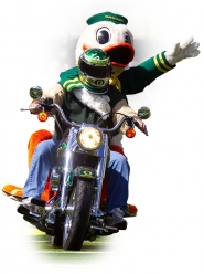 by: CHRISTOPHER ONSTOTT The Duck mascot, Puddles, celebrates with Oregon fans after a big victory. He'll be on the field for the Jan. 10 BCS title game in Glendale, Ariz.