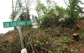 by: VERN UYETAKE The clear-cutting of a forest near the Shadow Wood neighborhood in the Stafford area was entirely legal according to state agency representatives at a meeting with concerned neighbors last week. Much of the land was once a Christmas tree farm.
