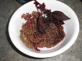 by: SUBMITTED PHOTO Amaranth and kiñiwa are two ancient herbs that are gaining popularity on the American table. They are considered superfoods for their nutrient value. The plants grow to a height of three to six feet and produced abundant quantities of seeds which cooked as grains.