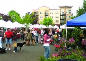 by: Tiffaney O'Dell People peruse the many offerings at the Gresham Farmers Market on Saturday, May 21.