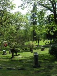 by: Claire Oliver Connecting a corridor of forestland that runs from Forest Park to Tryon Creek State Park, Portland city officials recently announced the purchase of 146 acres of undeveloped property that until now have been part of River View Cemetery.