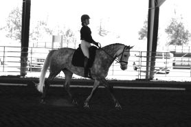 by: SUBMITTED PHOTO Emma Stevens won the OHSET state dressage championship this season.