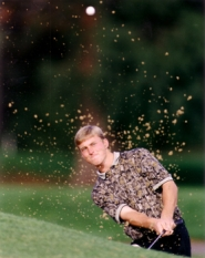 by: University of Portland Athletics Ryan Nelson chips out of a bunker during his all-conference golf career at the University of Portland. Nelson, a 1996 Forest Grove High School grad, qualified for the 2011 U.S. Open at Congressional Country Club in Bethesda, Md.