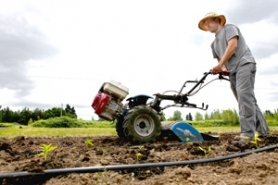 by: Jaime Valdez Dan Bravin, a project manager at Multnomah County's farm parcel in Troutdale, prepares the ground with a tiller.
