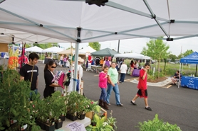 by: Chase Allgood Market-goers peruse plants, dresses and handmade scarves on a recent Thursday afternoon at the Cornelius Farmers' Market.