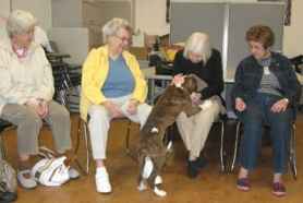 by: Barbara Sherman TREATS AND TRICKS – Some of the Summerfield Estates residents visiting the Bonnie L. Hays Small Animal Shelter on June 13 give treats to Maxine, who was available for adoption.